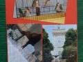 049_espongono2015_pittura.jpg
