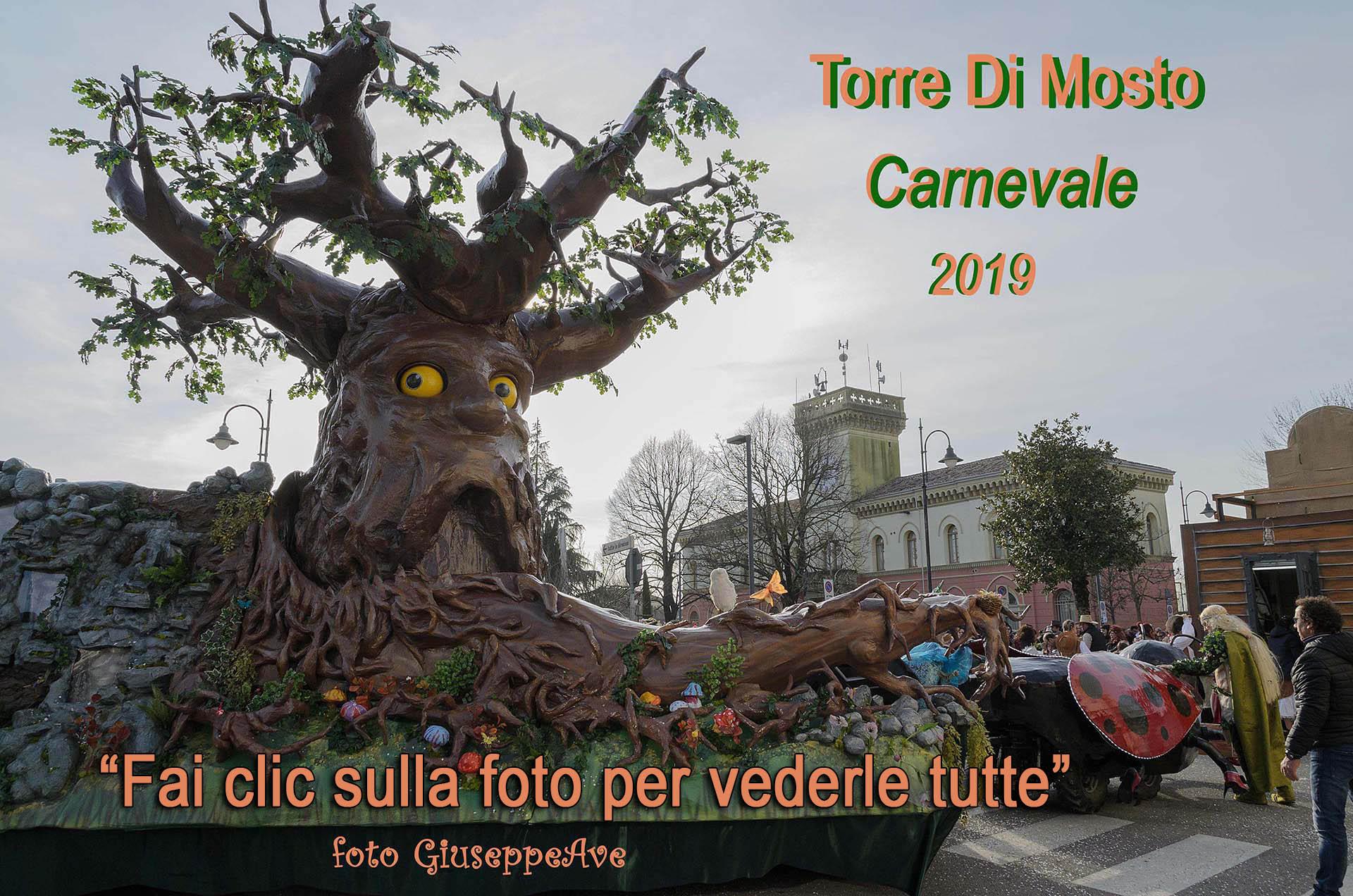 Carnevale Torresano 2019