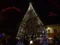 048_Mercatino di Natale 2015_2