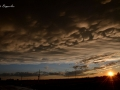 panoramiche-Torre_022