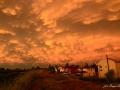 panoramiche-Torre_024