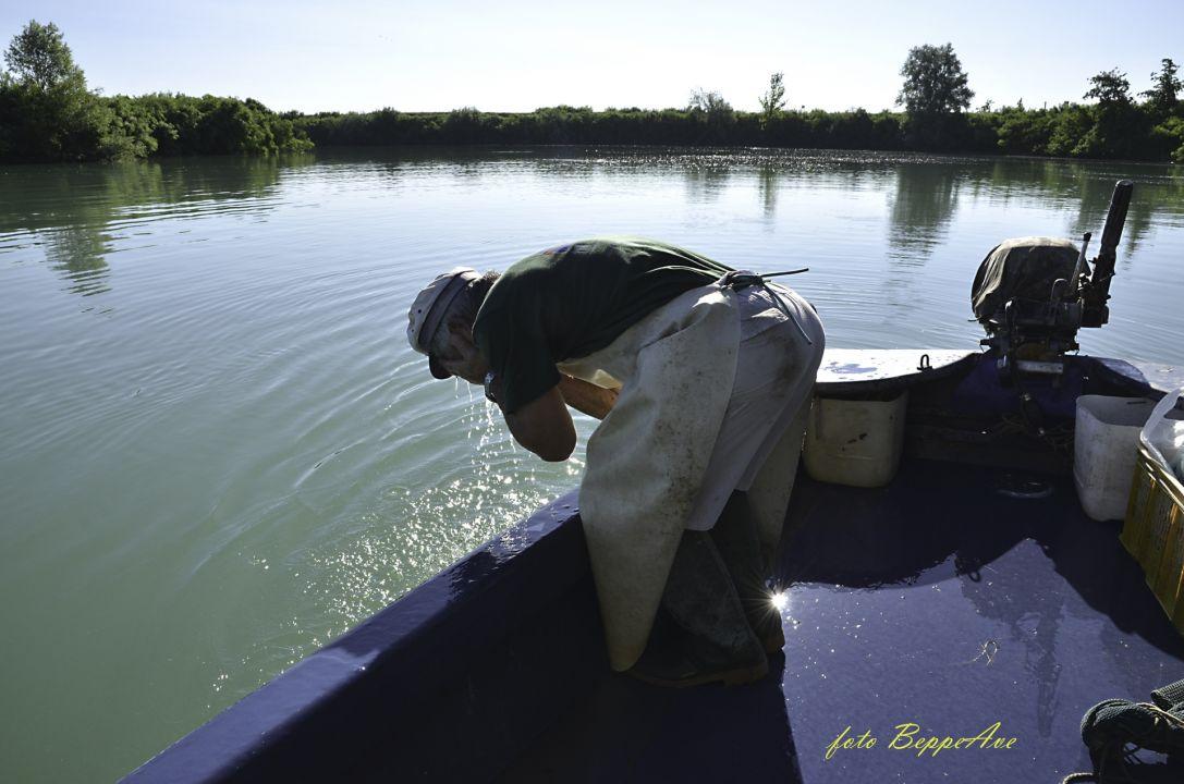 Pescatori DSCDella Livenza-09i_
