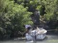 Pescatori DSCDella Livenza-018_